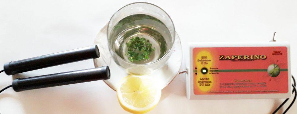 Zaper Zaperino za prehlad, limona in timijan