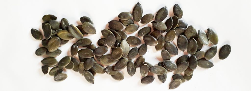 Bucnice vsebujejo fitosterole za upocasnjeno rast prostate z leti