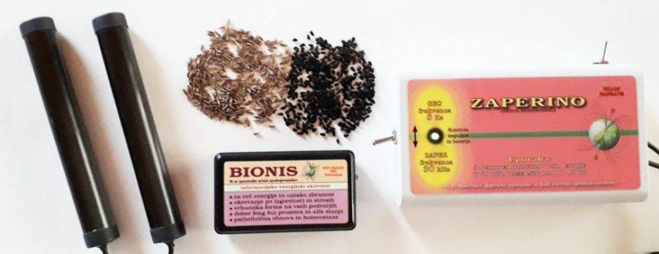 Zaperino, Bionis in obe kumini