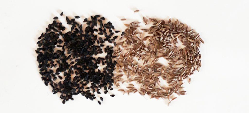 Pomladitev s crno in orientalsko kumino za moske in zenske spolne hormone - Zaper Zaperino