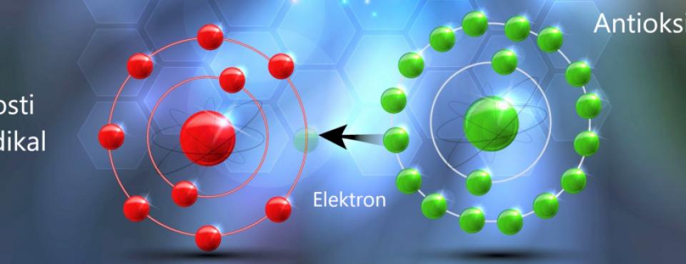 Prosti radikali se nevtralizirajo z elektronom antioksidanta – Zapper Zaper Zaperino frekvence