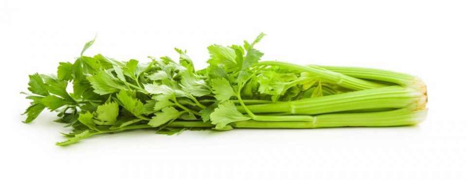krvni tlak Danica Mavric sok stebelna zelena za krvni pritisk