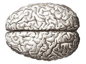 Kisk v možgane s Schumannovimi geo impulzi Bionis