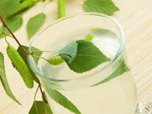Brezov čaj je sestavina detoksikacije telesa in Zapper Zaper Zaperino frekvence za uničevanje parazitov